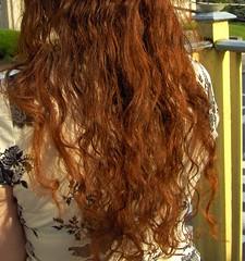 3699559272 404ca58b22 m henna for hair